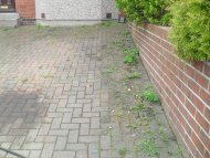Dirty, weedy driveway in Sheffield, South Yorkshire